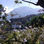 Photo de Garden & Villas Resort