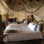 Tawi Lodge afbeelding