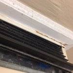 vent was blowing out moldy air