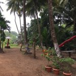 Best place to stay near Shriwardhan beach. Good food. Good surrounding.