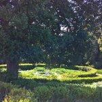 Jardines y pileta