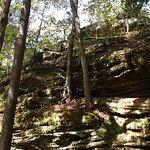 Foto de Dixon Springs State Park