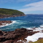 Rocky shores at Cape Spear