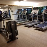More treadmills and ellipticals