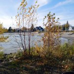 Lake Winnipeg's shores line