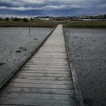 IMG_20171022_141330_large.jpg