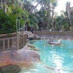 바히아 리조트 호텔의 사진
