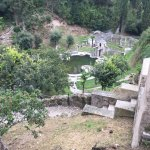 ziemlich verwahrloste Teichanlage