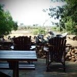 Photo of Ndlovu Camp