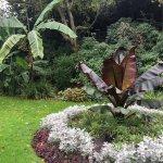 3 Plantation Gardens.