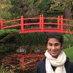 Lovely Japanese gardens