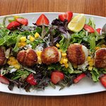 The Sunday Scallop Salad