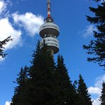 Tv tower. Good views and lunch