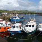 Harbor on Ring of Kerry