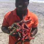 Photo of Coral Reef Beach Resort