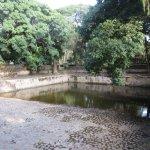Photo of Fasiladas Bath Timket