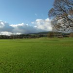 View of Golf Course across from Powerscourt Hotel