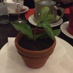 Photo of Rowan Tree Cafe Bar