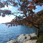 Casco Bay trail at Wolfe's Neck.