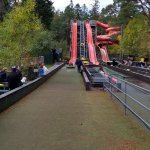 Landmark Forest Adventure Park Picture