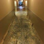 Photo de Sawgrass Grand Hotel and Suites Sports Complex