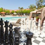 Pool Chess_PalmGarden