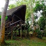 Photo of Lagoon Resort