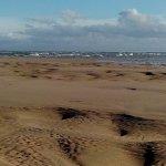 Am Strand und in den Dünen