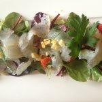 Hausgebeizter Zander mit Blattsalaten