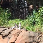 Caldwell Zooの写真