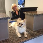 Pet Friendly accomodation!, even our Front Desk is pet friendly!!