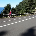 Large bike lane for bicycles and hikers