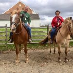 Rest/photo stop with Hickory Hollow Horse Farm at Gettysburg Battlefields