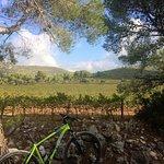 Foto de Bikes Sitges