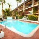 Enjoy our heated pool! www.hotel-peppertree.com