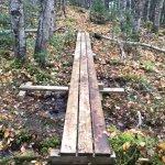 The point Trail: 1 of 12 boardwalks