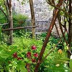 Le jardin du 41 Quai de Seine à St Mammès