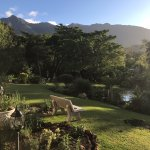 Photo de Braeside Guest House