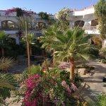 Hotel Planet Oasis Foto