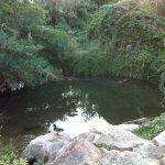 Parc de Mas Miquel
