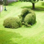 The gardens are full of topiary
