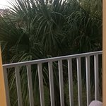 Zdjęcie Legacy Vacation Resorts-Indian Shores