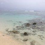 Low tide beach front of villa