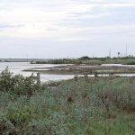 Photo de Laguna Madre