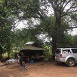 Thob tree Camp site
