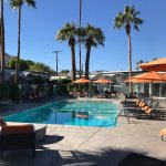 Foto van The Palm Springs Hotel