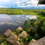 Gambar Napo Wildlife Center Ecolodge
