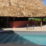 """This is our bar, your bar """"Paddle Bar at Coral House"""""""