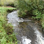 fast flowing stream below waterfall