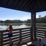 Disney's Hilton Head Island Resort Photo